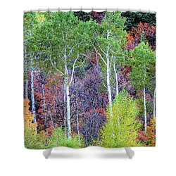 Shower Curtain featuring the photograph Autumn Mix by Bryan Carter