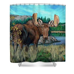 Autumn Moose Shower Curtain