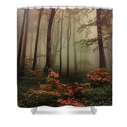 Autumn Mornin In Forgotten Forest Shower Curtain
