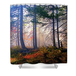 Autumn Morning Fire And Mist Shower Curtain by Diane Schuster