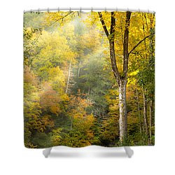 Autumn Morning Rays Shower Curtain
