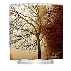 Shower Curtain featuring the photograph Autumn Morning by Stephanie Frey