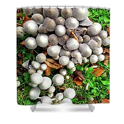 Autumn Mushrooms Shower Curtain