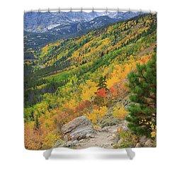 Autumn On Bierstadt Trail Shower Curtain