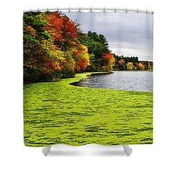 Autumn On Grist Mill Pond In Sudbury Shower Curtain