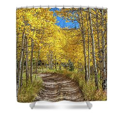 Autumn On Medano Pass Shower Curtain