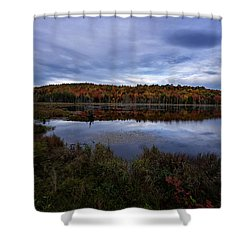 Autumn On North Pond Road Shower Curtain by Tom Singleton