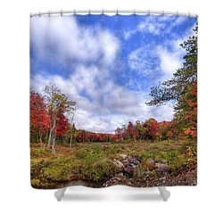Shower Curtain featuring the photograph Autumn On The Stream by David Patterson
