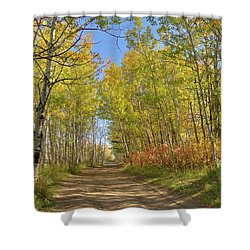 Autumn On The Trail Shower Curtain