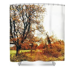 Autumn On White Shower Curtain
