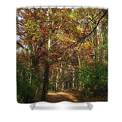 Autumn Path At St Croix Bluffs Shower Curtain