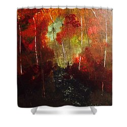 Shower Curtain featuring the painting Sunset Trail by Denise Tomasura