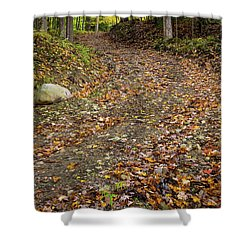 Shower Curtain featuring the photograph Autumn Pathway by Dale Kincaid