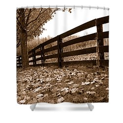 Autumn Perspective Shower Curtain by Joe  Ng