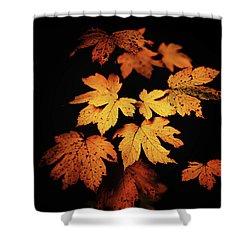 Autumn Photo Shower Curtain