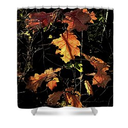 Autumn Poetry Shower Curtain