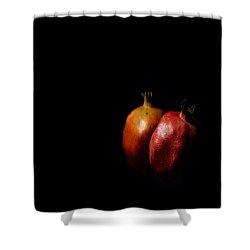 Autumn Pomegranate Shower Curtain