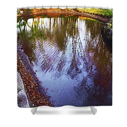 Autumn Reflection Pond Shower Curtain