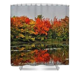 Autumn Portrait Shower Curtain by Kathleen Sartoris