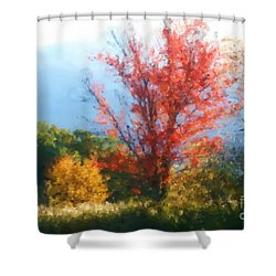 Autumn Red And Yellow Shower Curtain