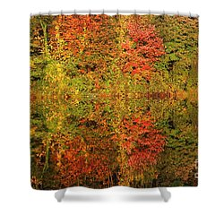 Shower Curtain featuring the photograph Autumn Reflections In A Pond by Smilin Eyes  Treasures