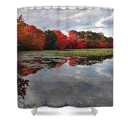 Autumn Reflections Shower Curtain by Mikki Cucuzzo