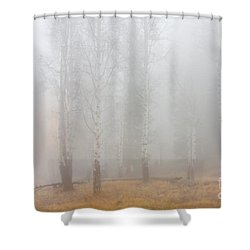 Autumn Reveals Shower Curtain by Mike  Dawson