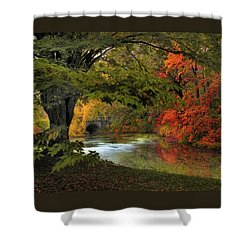 Shower Curtain featuring the photograph Autumn Reverie by Jessica Jenney