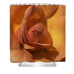 Shower Curtain featuring the photograph Autumn Rose by Cathy Donohoue