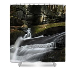 Autumn Secrets Shower Curtain