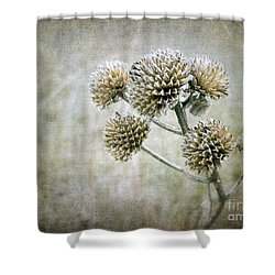 Autumn Seed Heads IIi Shower Curtain