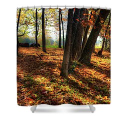 Autumn Shadows In The Blue Ridge Shower Curtain by Dan Carmichael