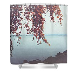 Shower Curtain featuring the photograph Autumn Shore by Ari Salmela