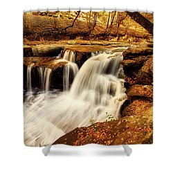 Autumn Solitude Shower Curtain by L O C