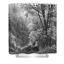 Autumn Sparkles On Green Mountain Shower Curtain by John Poon