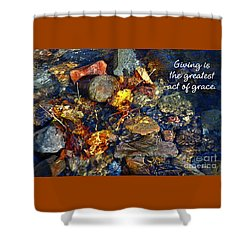 Shower Curtain featuring the drawing Autumn Splash Grace by Diane E Berry