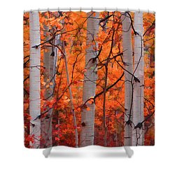 Autumn Splendor Shower Curtain