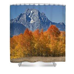 Autumn Splendor In Grand Teton Shower Curtain by Sandra Bronstein