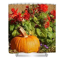 Shower Curtain featuring the digital art Autumn Still Life by Ann Johndro-Collins