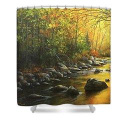 Autumn Stream Shower Curtain by Kim Lockman