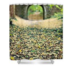 Autumn Stroll Shower Curtain by Meirion Matthias