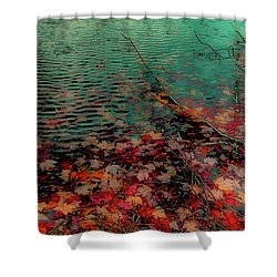 Shower Curtain featuring the photograph Autumn Submerged by David Patterson
