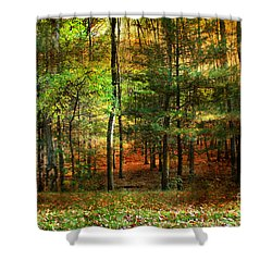 Autumn Sunset - In The Woods Shower Curtain