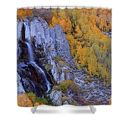 Autumn Surrounds Mist Falls In The Eastern Sierras Shower Curtain