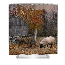 Autumn Sweater Shower Curtain