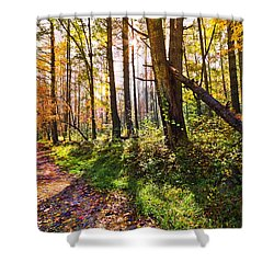 Autumn Trail Shower Curtain by Debra and Dave Vanderlaan