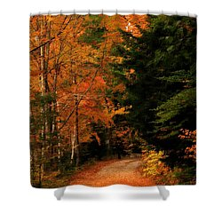 Autumn Trail Shower Curtain