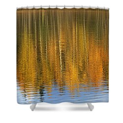 Autumn Tree Reflections Shower Curtain by Elvira Butler