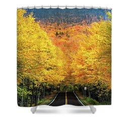 Autumn Tree Tunnel Shower Curtain