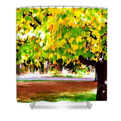 Autumn Trees 6 Shower Curtain by Lanjee Chee